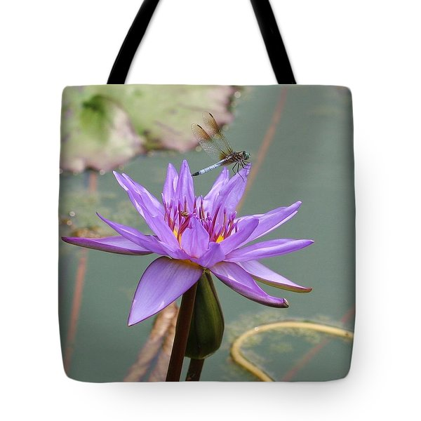 Resting Time Tote Bag by Karen Silvestri