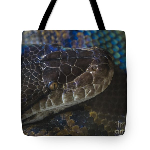 Reticulated Python With Rainbow Scales Tote Bag