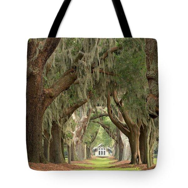 Retreat Avenue Of The Oaks Tote Bag