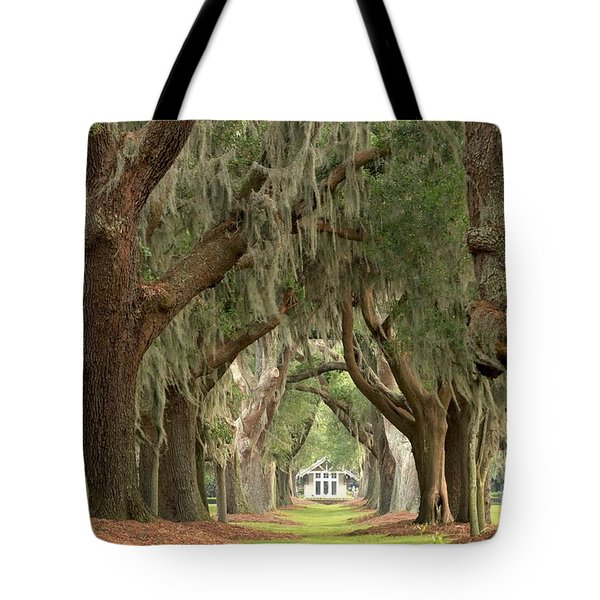 Retreat Avenue Of The Oaks Tote Bag by Adam Jewell