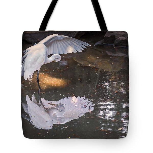 Revealed Landscape Tote Bag