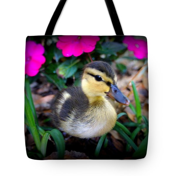 Tote Bag featuring the photograph Reynolds by Laurie Perry