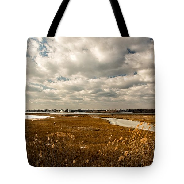 Rhode Island Marshes 1 Tote Bag