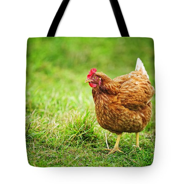 Rhode Island Red Chicken Tote Bag by Elena Elisseeva