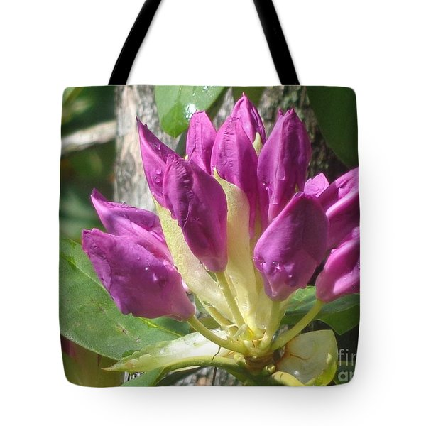 Rhodo Buds N Raindrops Tote Bag