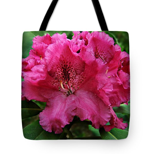 Tote Bag featuring the photograph Rhododendron ' Bessie Howells ' by William Tanneberger