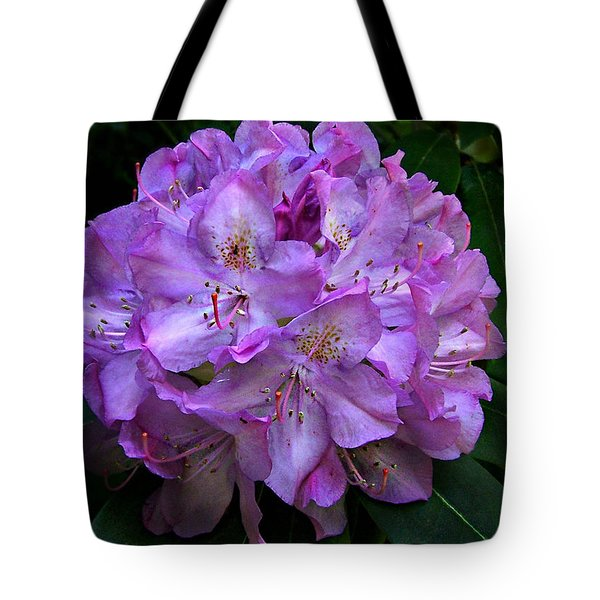 Tote Bag featuring the photograph Rhododendron ' Roseum Elegans '  by William Tanneberger