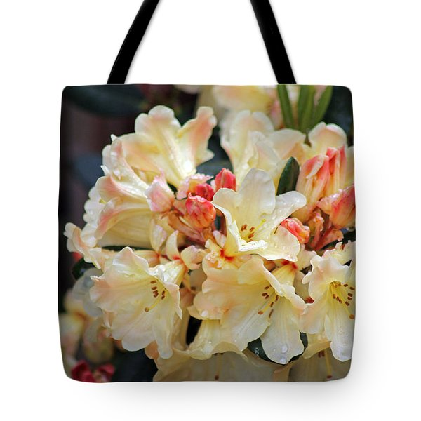 Rhododendron Nancy Evans Tote Bag