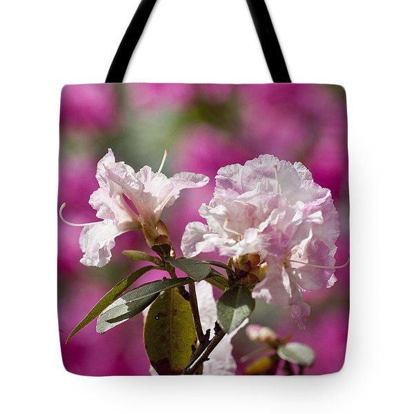 Rhododendron Tote Bag by Steven Ralser