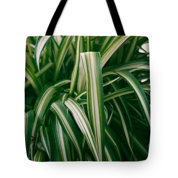 Ribbon Grass Tote Bag