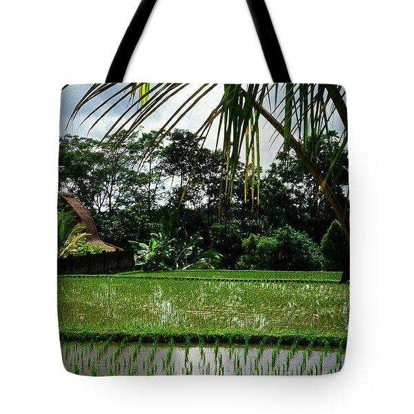Rice Fields Bali Tote Bag by Juergen Weiss