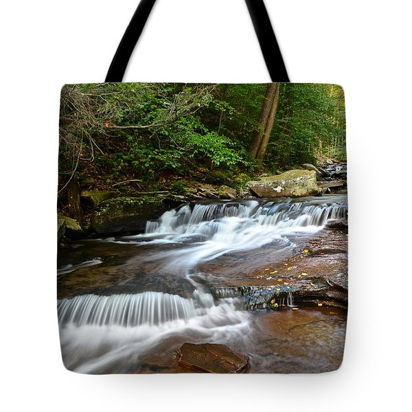 Ricketts Glen Tote Bag by Frozen in Time Fine Art Photography