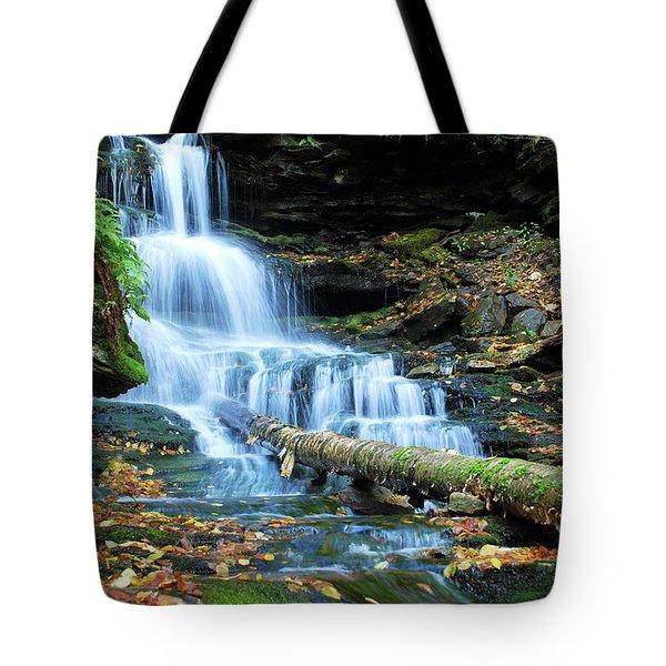 Ricketts Glen Hidden Waterfall Tote Bag