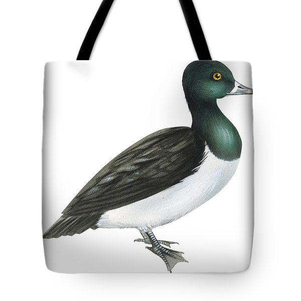 Ring-necked Duck  Tote Bag by Anonymous