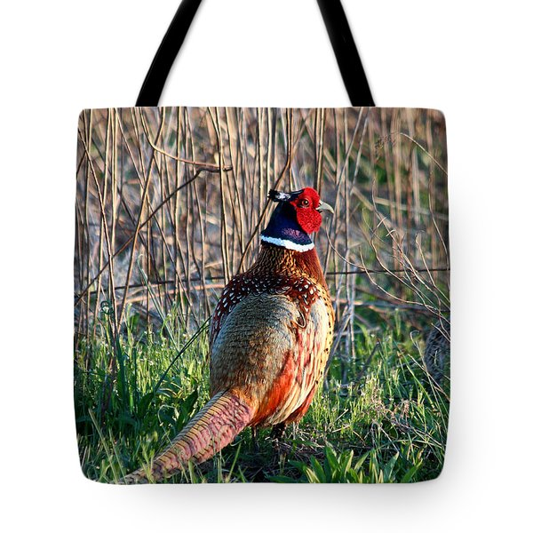 Ring-necked Pheasant Tote Bag