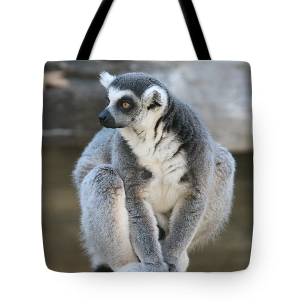 Tote Bag featuring the photograph Ring-tailed Lemur #3 by Judy Whitton