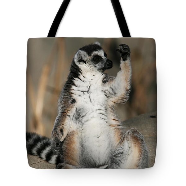 Tote Bag featuring the photograph Ring-tailed Lemur by Judy Whitton