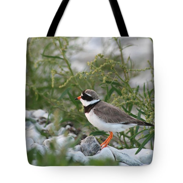 Ringed Plover On Rocky Shore Tote Bag