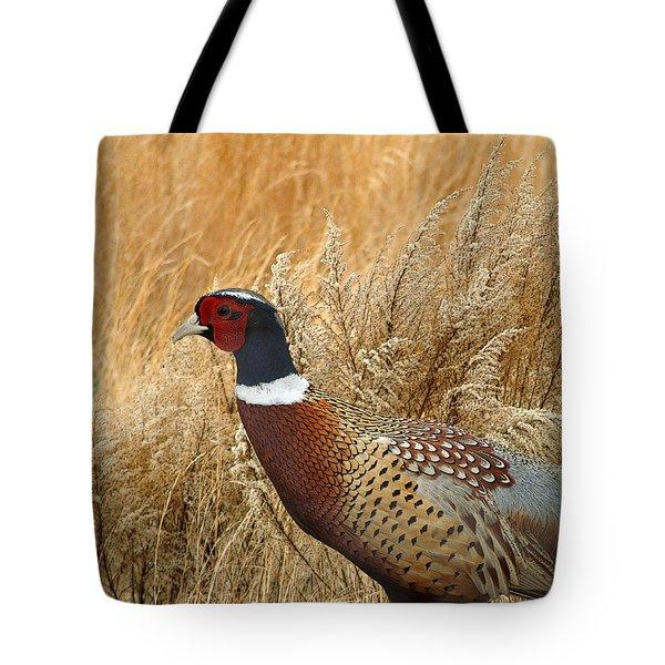 Ringneck Pheasant  Tote Bag