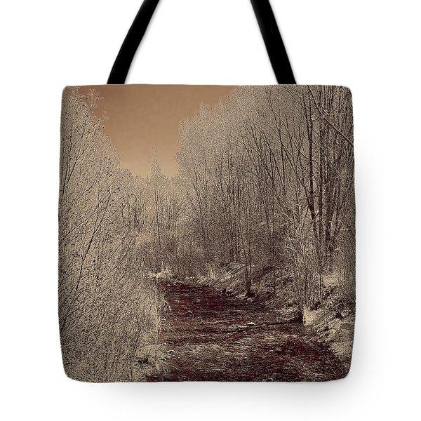 Rio Taos Bosque Iv Tote Bag