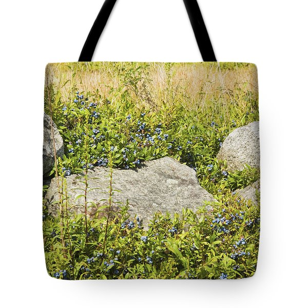 Ripe Maine Low Bush Wild Blueberries Tote Bag by Keith Webber Jr