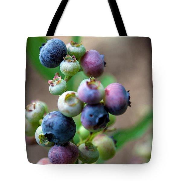 Ripening Blueberries Tote Bag