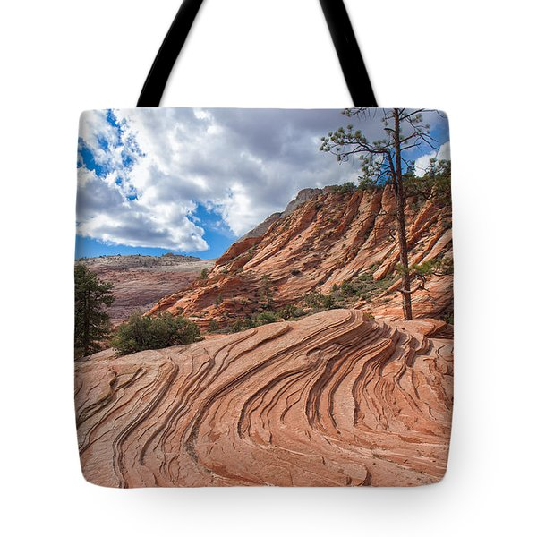 Tote Bag featuring the photograph Rippled Rock At Zion National Park by John M Bailey