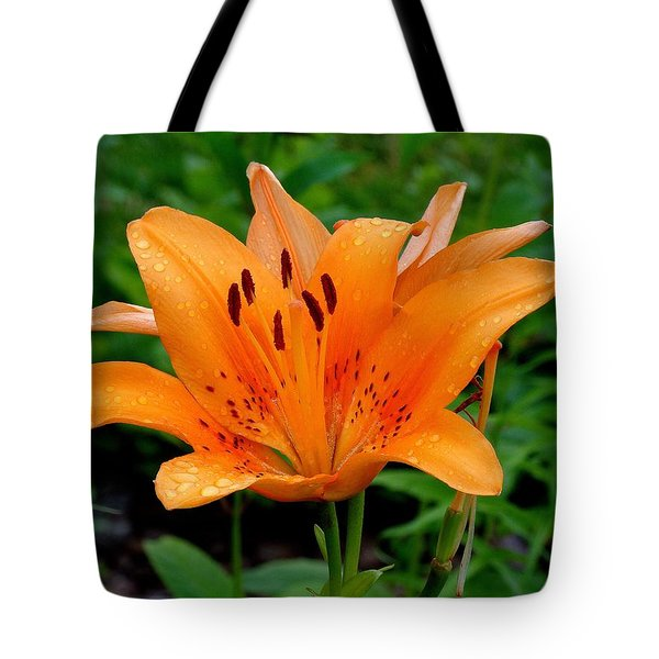 Rising Tote Bag by Rodney Lee Williams