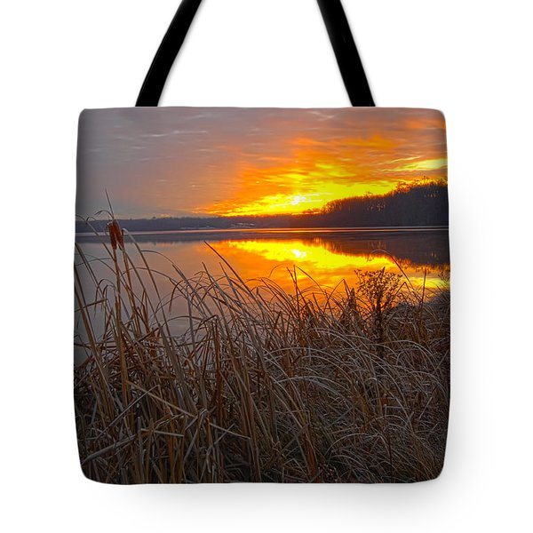Tote Bag featuring the photograph Rising Sunlights Up Shore Line Of Cattails by Randall Branham