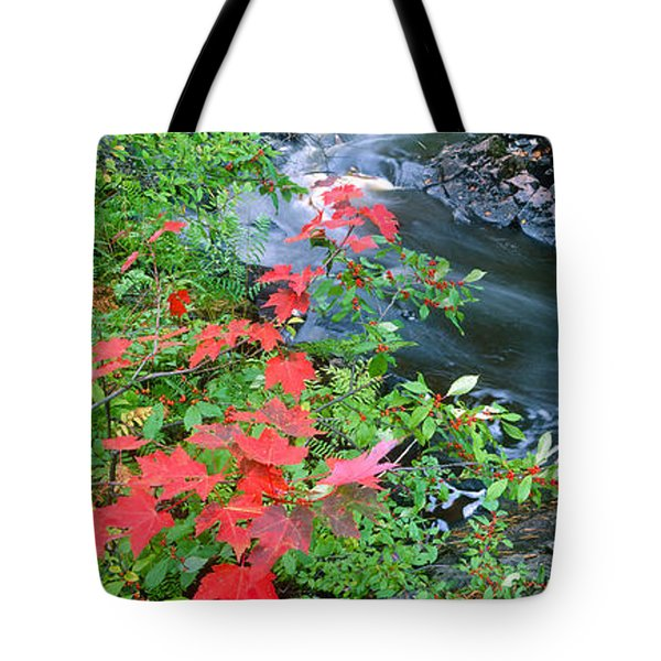 River Flowing Through A Forest, Black Tote Bag