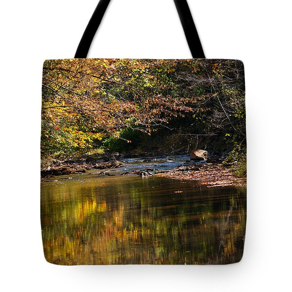 Tote Bag featuring the photograph River In Autumn by Lisa L Silva