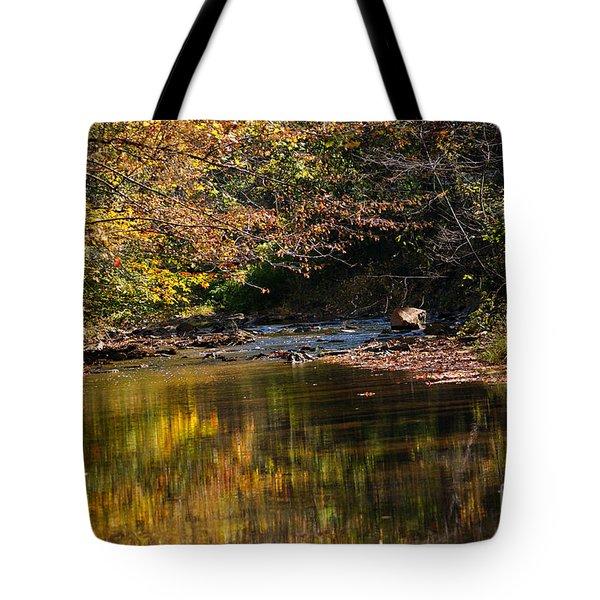 River In Autumn Tote Bag by Lisa L Silva