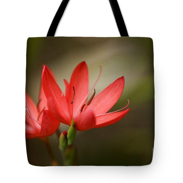 River Lily Tote Bag by Liz  Alderdice