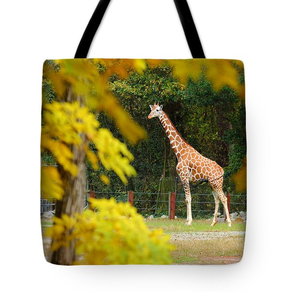 Riverbanks Zoo 1 Tote Bag