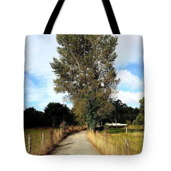 Road To Santiago Tote Bag