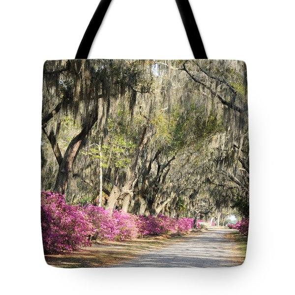 Road With Azaleas And Live Oaks Tote Bag