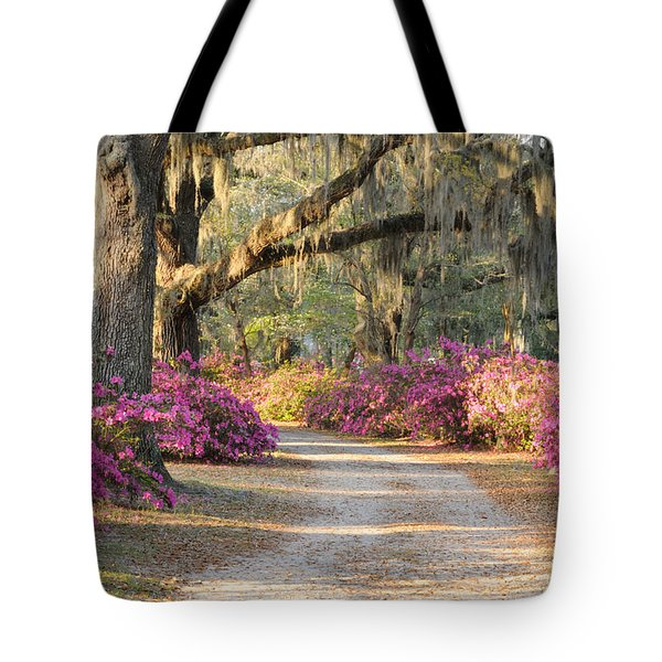Road With Live Oaks And Azaleas Tote Bag