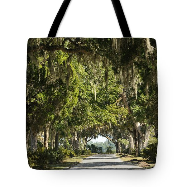 Tote Bag featuring the photograph Road With Live Oaks by Bradford Martin