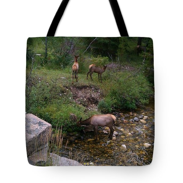 Roadside Luncheon Tote Bag