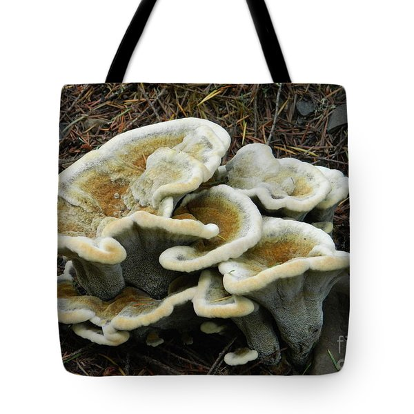 Tote Bag featuring the photograph Roadside Treasure by Chalet Roome-Rigdon