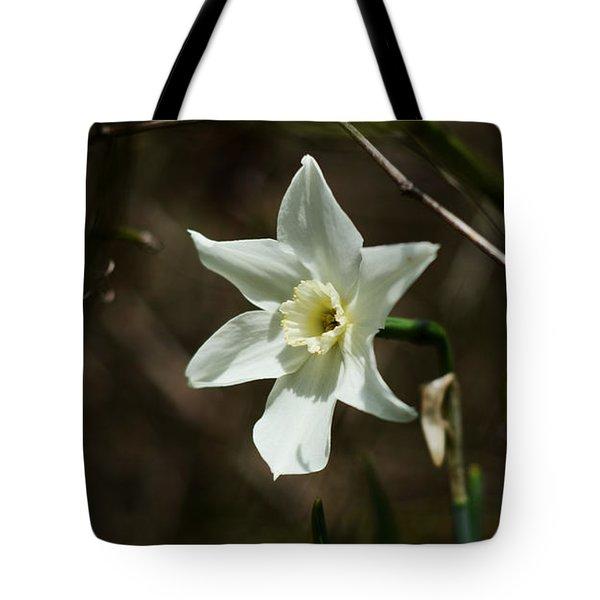 Roadside White Narcissus Tote Bag by Rebecca Sherman