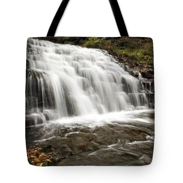 Roaring Falls Salt Springs Tote Bag by Christina Rollo