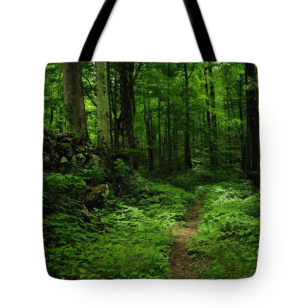 Tote Bag featuring the photograph Roaring Fork Trail by Debbie Green