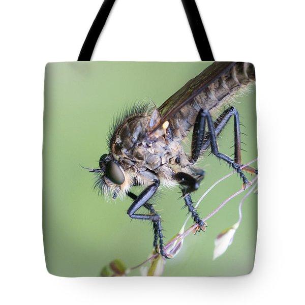 Robber Fly Asilinae Close Up Tote Bag by Jivko Nakev
