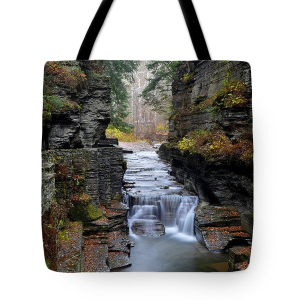 Robert Treman State Park Tote Bag by Frozen in Time Fine Art Photography