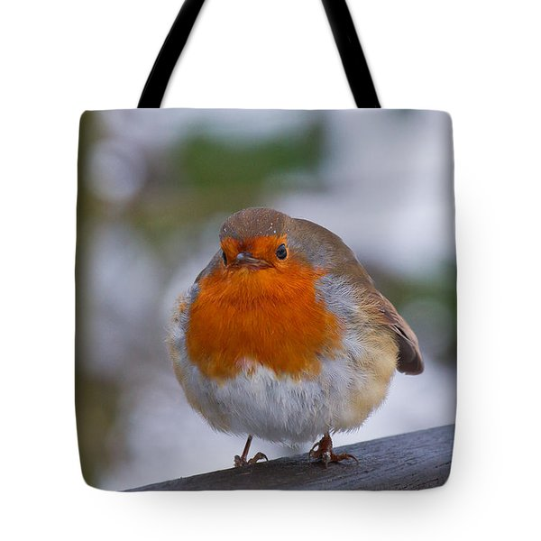 Robin 1 Tote Bag by Scott Carruthers