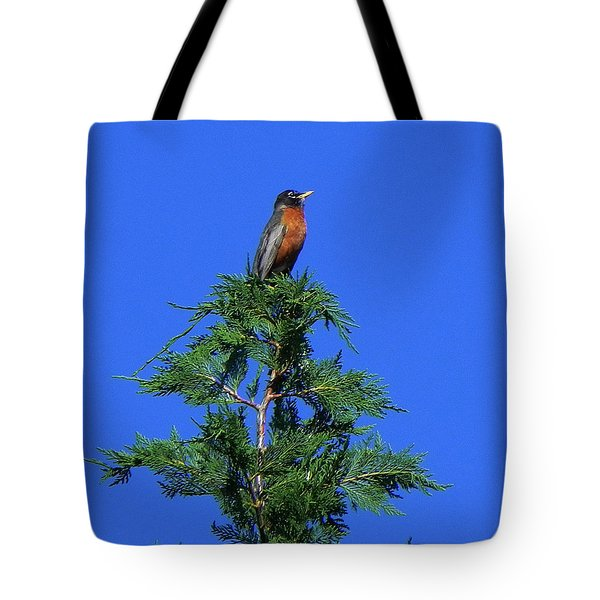 Robin Christmas Tree Topper Tote Bag