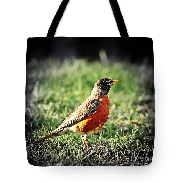Robin Tote Bag by Elena Elisseeva