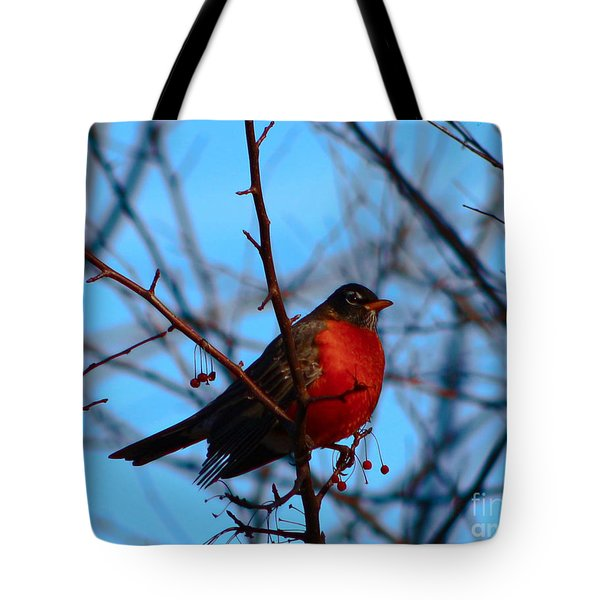 Tote Bag featuring the photograph Robin by Gena Weiser