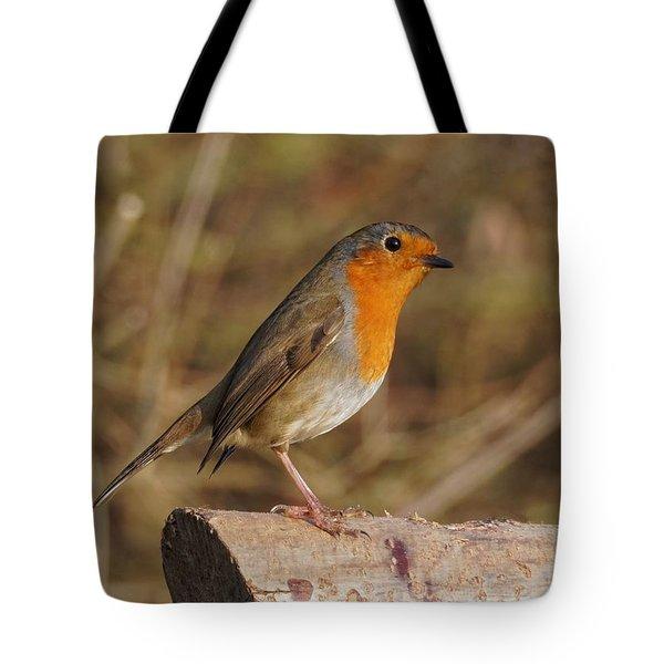 Robin On A Log -2 Tote Bag